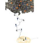 Transatlàntic: treball en procés per a un espectacle d'objectes i persones, per Laura Batllori. Capítol 2