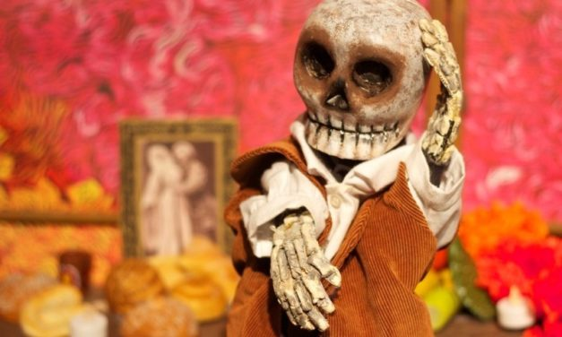 Trobada professional al 29è Festival Internacional de Titelles de Gavà: el relat i la creació